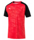 Maillot de football et foot 5 training cup PUMA